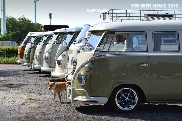 01_dsc_0049_vw_buses_and_dog