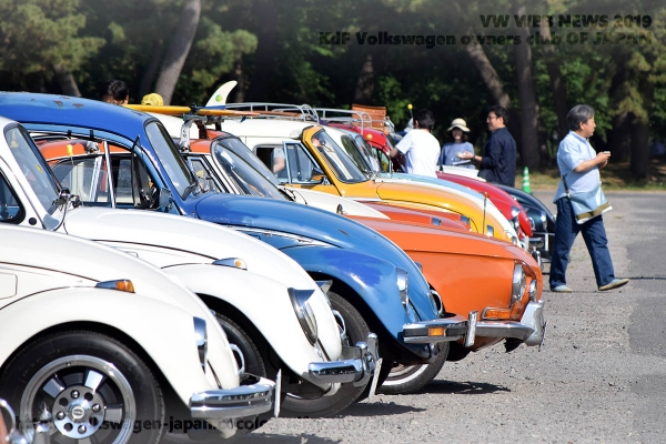 01_dsc_0081_vw_t34_and_bugs