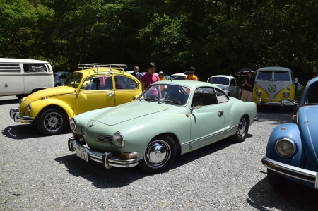 Dsc_0310_vw_mint_ghia_and_yellow_bug