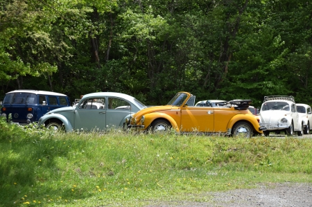 Dsc_0342_78_vw_conv_and_65_bug