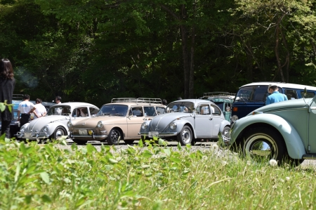 Dsc_0447_vw_bugs_and_variant