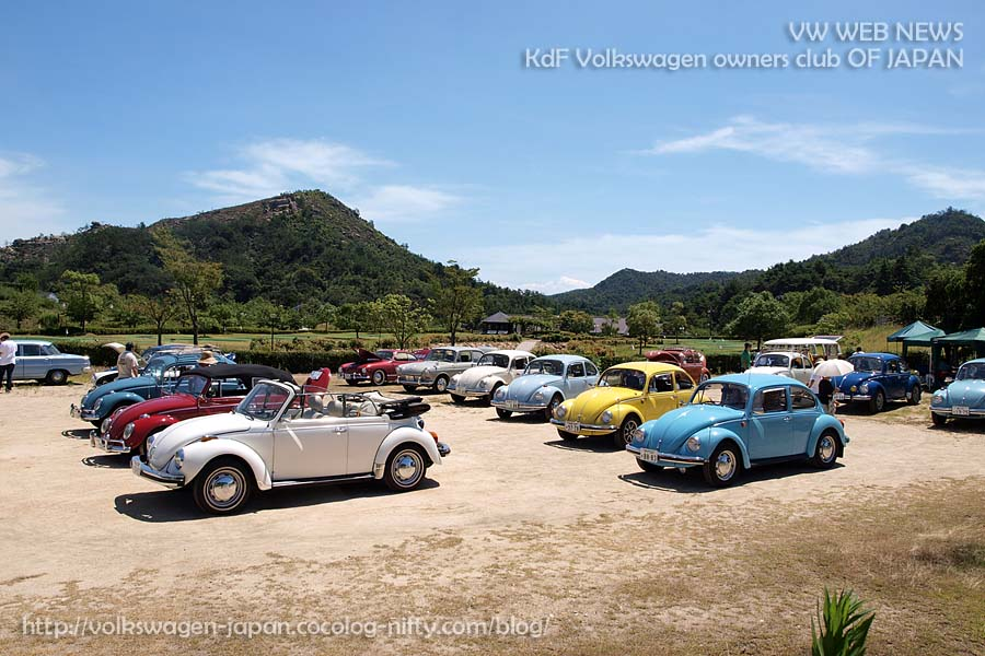 2011p8070253_all_vws