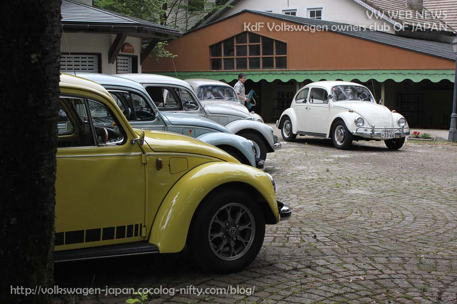 Img_3703_vw_beetles