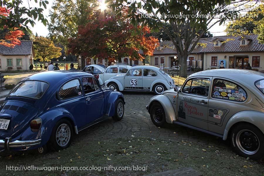 Img_0955_vw_bugs_in_autumn