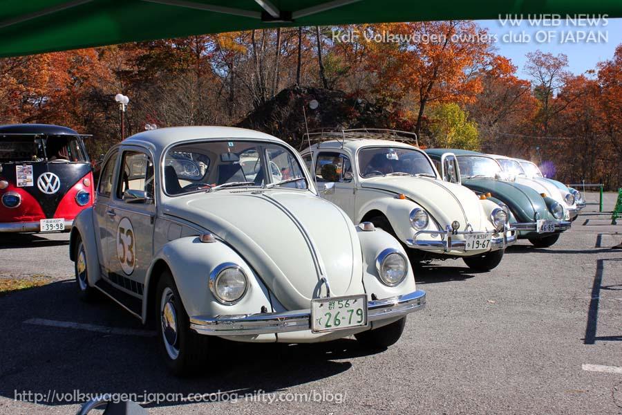 Img_0167_1969_and_beetles