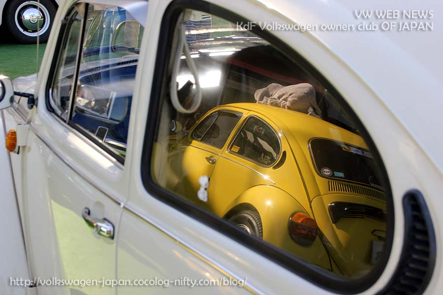 Img_0140_yellow_bug_in_vw_windo