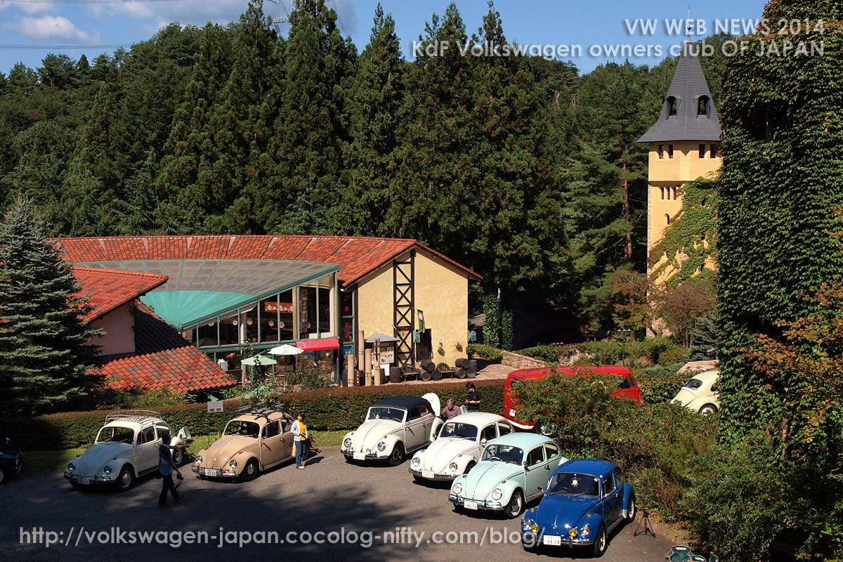 P9210262_vw_beetles