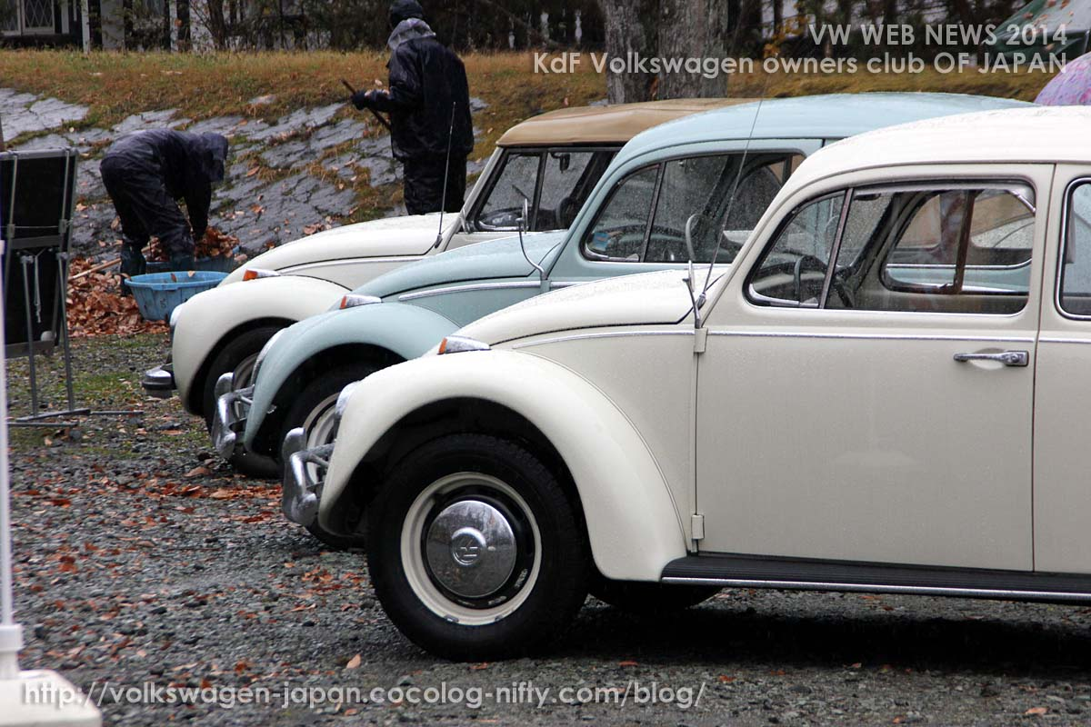 Img_0349_67_65_73_vw_beetles