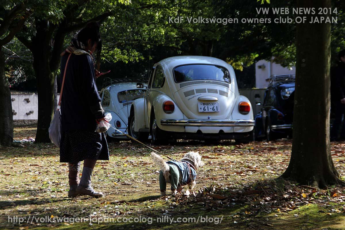 Img_0599_vws_and_dog
