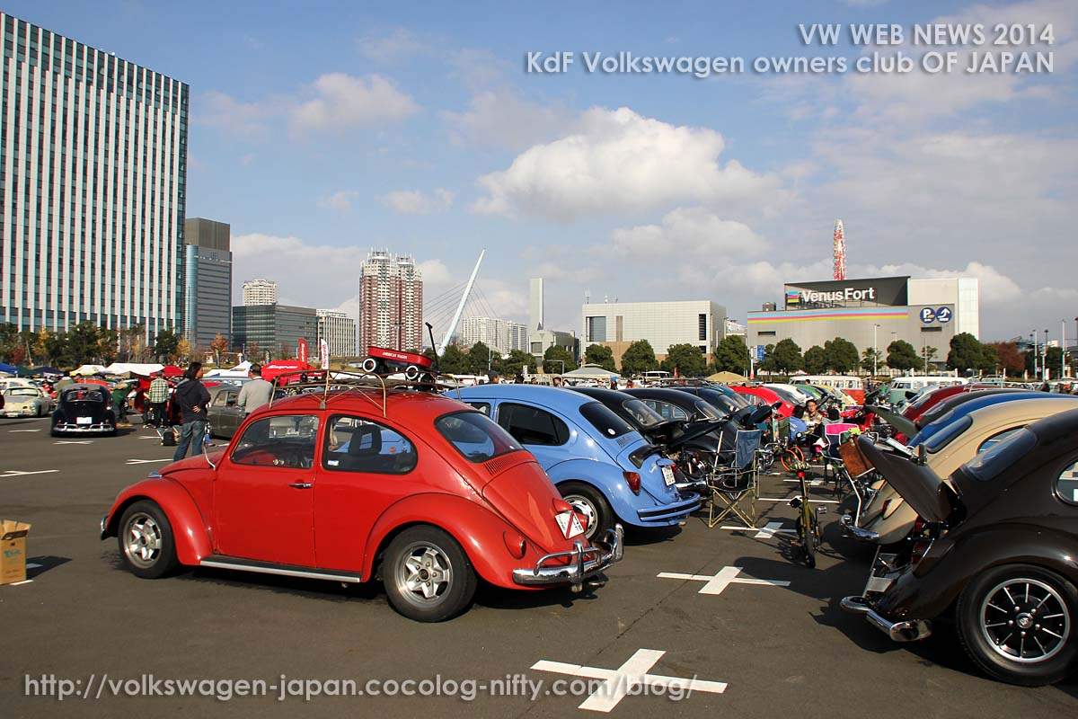 Img_0575_vw_bug_area