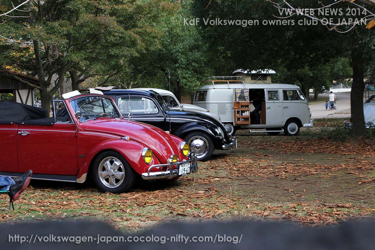 Img_0543_vw_bugs_and_westy