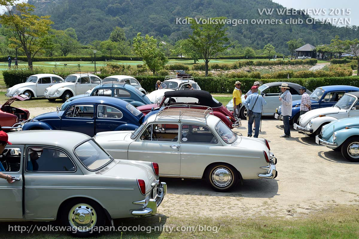 Dsc_0236_vw_type3_and_beetles