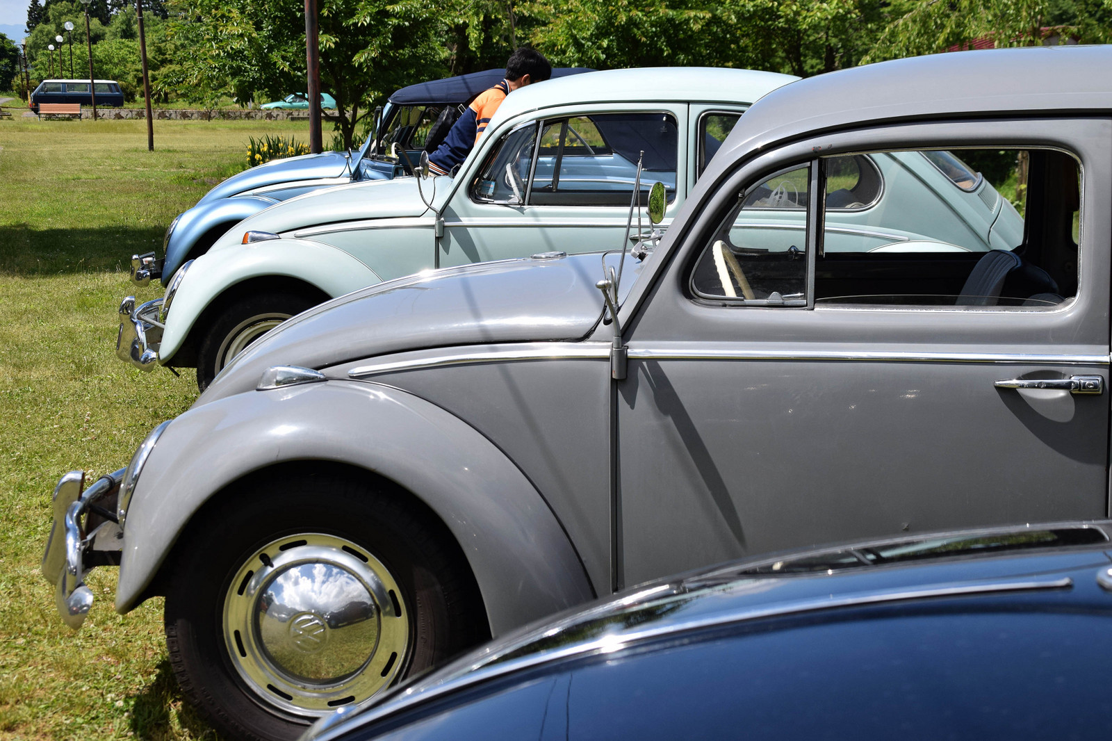 Dsc_0213_1964vw_and