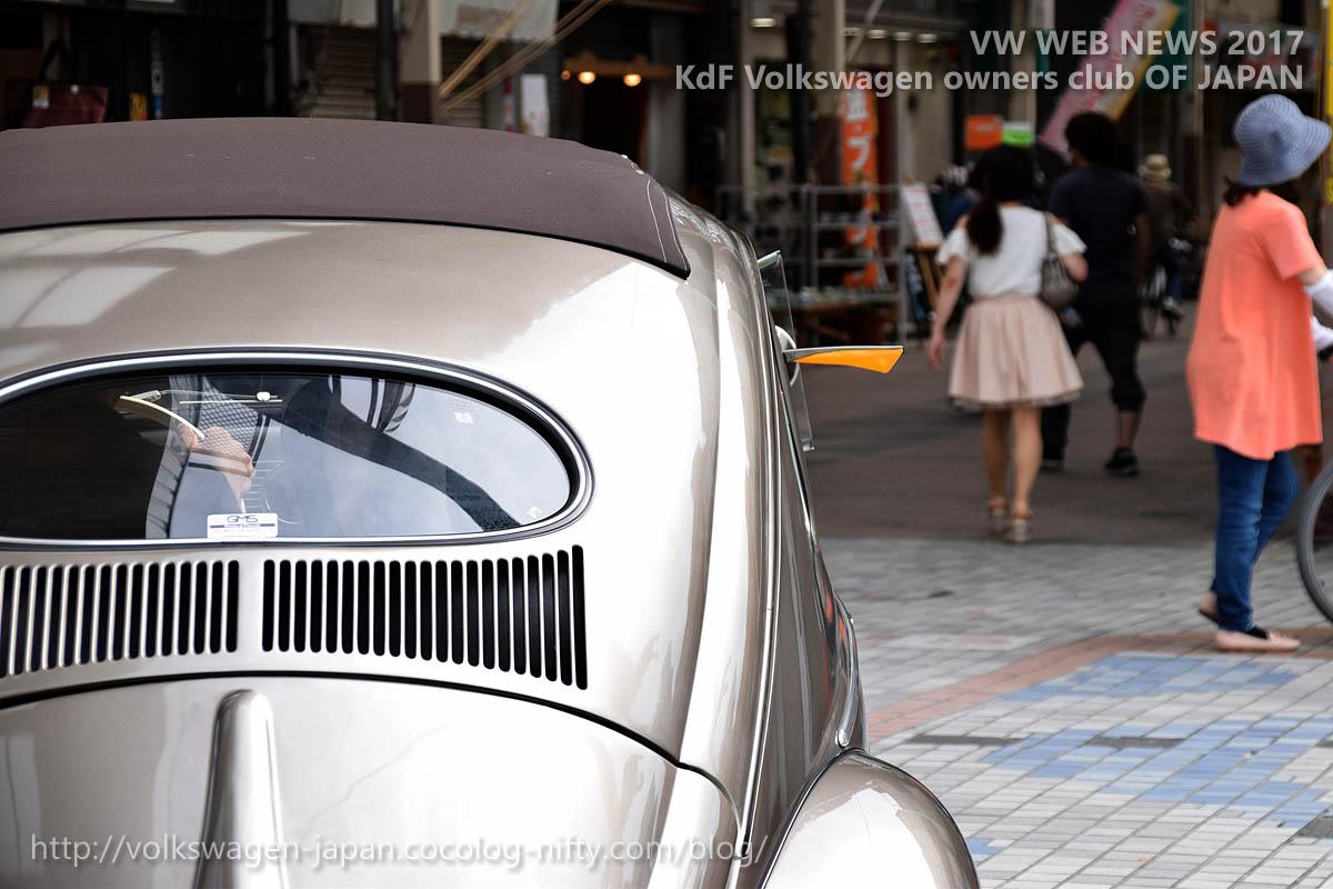 Dsc_0358_vw_oval_beetle