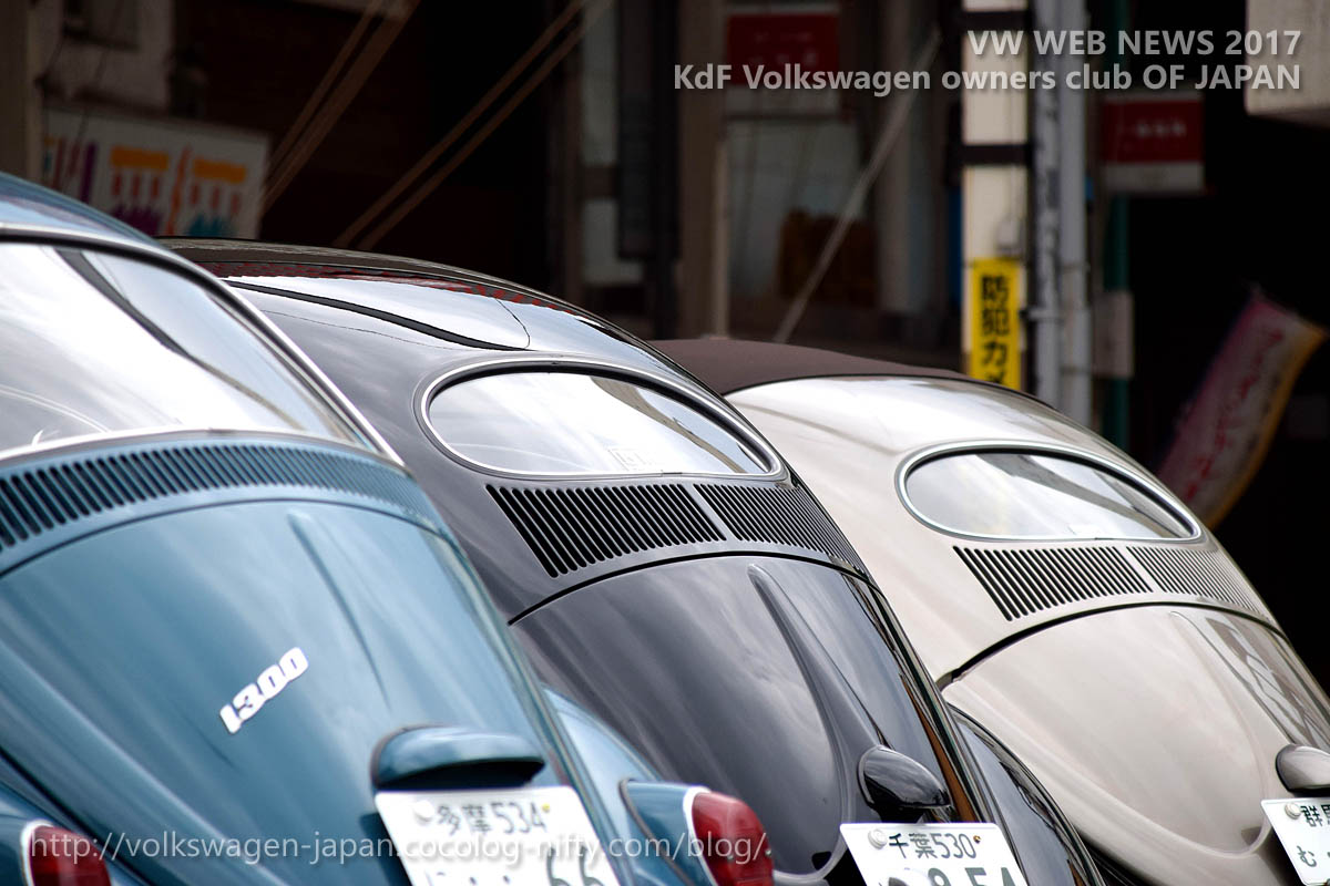 Dsc_0639_vintage_vws_rear_windows