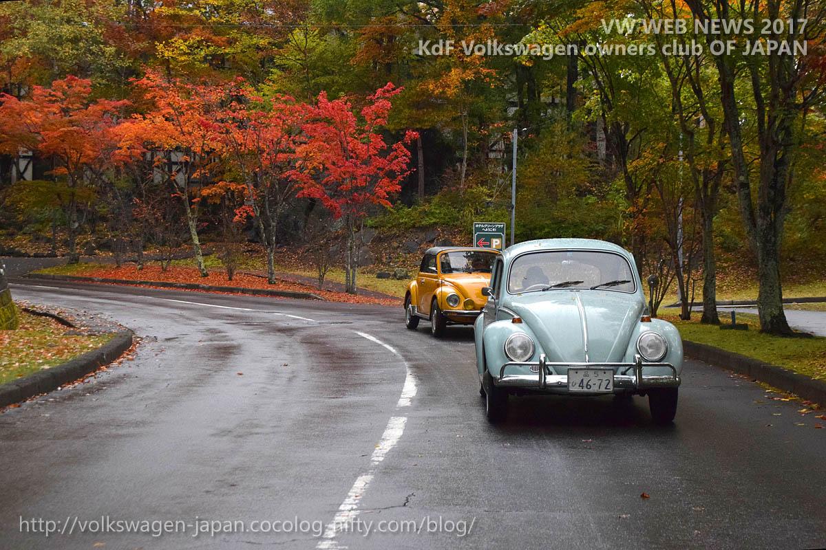 Dsc_0048_vw_run_red_autumn_leaves