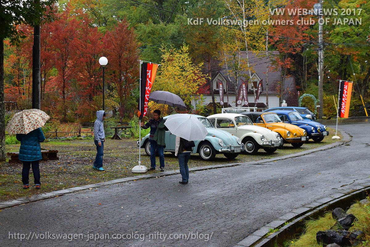Dsc_0525_vw_bugs_in_the_rain