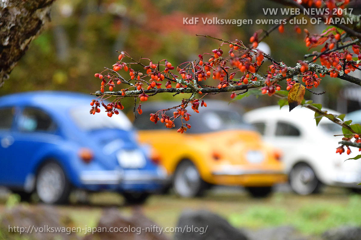 Dsc_0792_red_fruit_and_vws