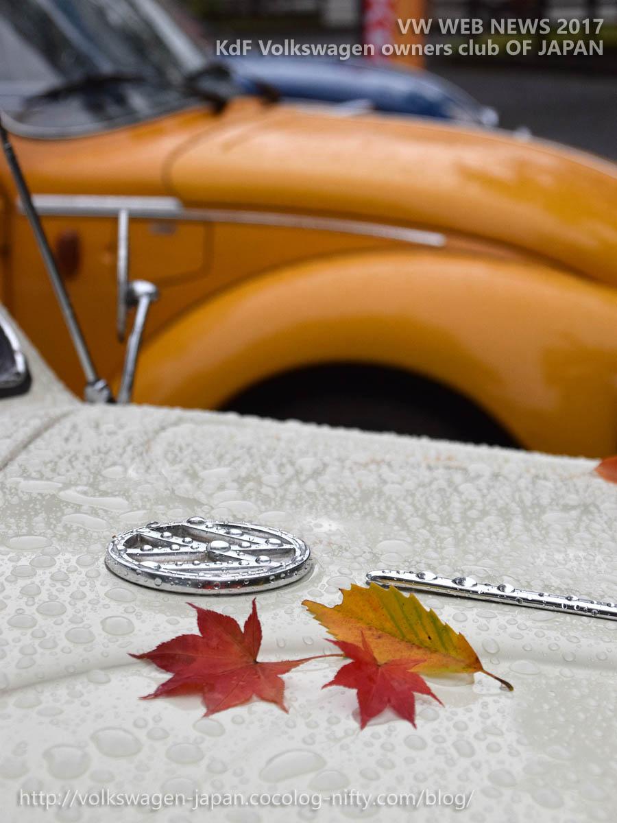 Dsc_0927_vw_logo_in_autumn