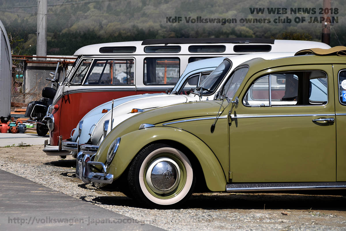 Dsc_0128_vw_bugs_and_bus