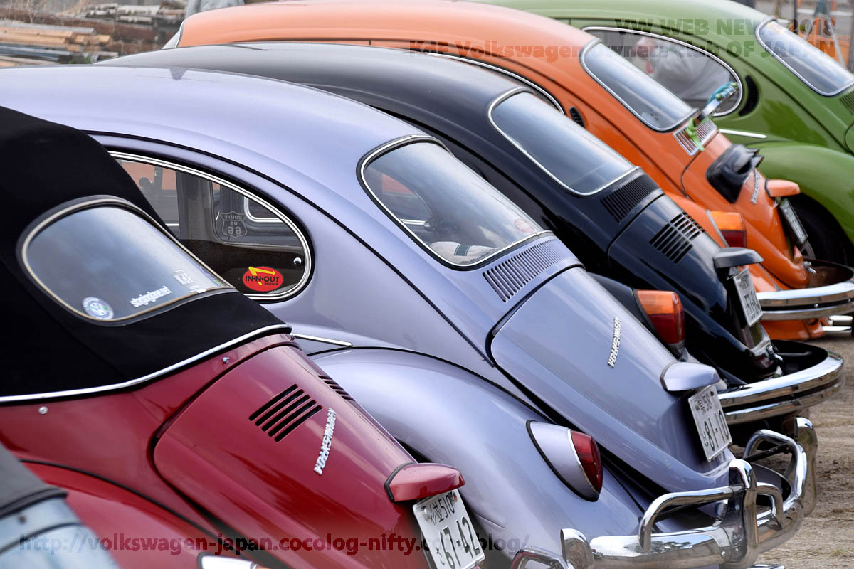 Dsc_0374_vw_beetles_rear