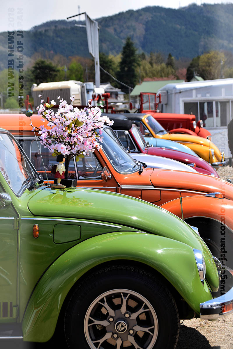 Dsc_0489_vw_bugs_and_sakura