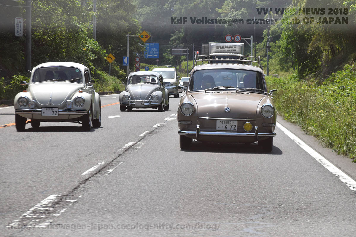 Dsc_0558_vw_variant_and_bugs_r18