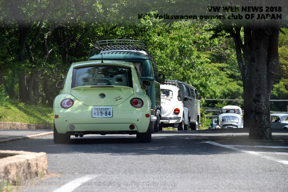 Dsc_0760_vws_in_green