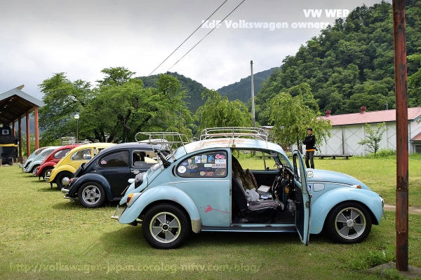 Dsc_0648_72_vw1302s_and_vw_bugs